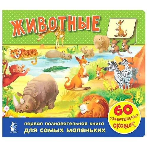 Купить Тютина М. Животные. 60 удивительных окошек , Малыш, Книги для малышей