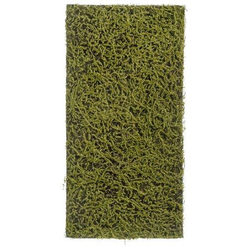 цвет оливковый Искусственное растение Мох Сфагнум Fuscum оливковый (полотно среднее) 50x100 см, цвет: оливковый