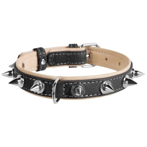 Фото - Ошейник кожаный для собак с шипами черный верх 35 мм 51 – 71 см Collar WauDog Soft (1 шт) ошейник для собак collar waudog с рисунком цветы 15 мм 27 36 см черный
