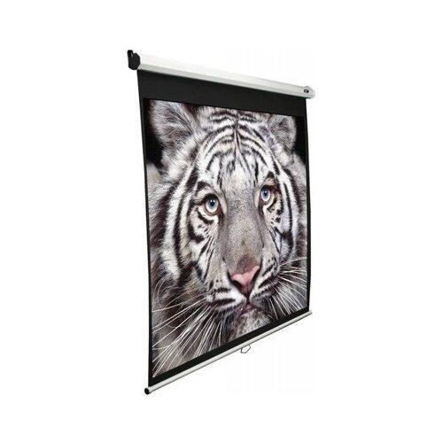 Фото - Экран Elite Screens Manual M99NWS1 экран настенный elite screens m100nwv1 100 4 3 152x203 ручной mw белый
