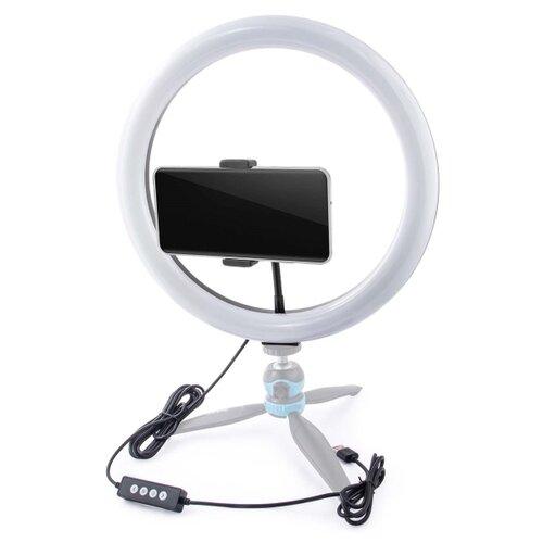 Фото - Осветитель Rekam RL-26 LED, для смартфона, 11 Вт, 3000 / 5800 К штатив rekam e 125