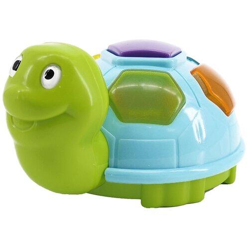 Купить Развивающая игрушка RED BOX Черепаха 23468, Развивающие игрушки