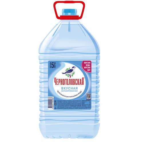 Вода минеральная Черноголовская негазированная, ПЭТ, 5 л вода минеральная сенежская негазированная пэт 1 5 л