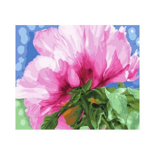 Картина по номерам Paintboy «Прожилки на солнце» (холст на подрамнике, 40х50 см) картина по номерам paintboy маленькая деревушка холст на подрамнике 40х50 см