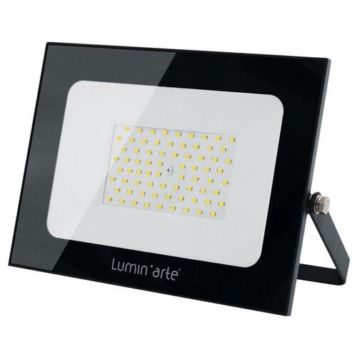 Прожектор светодиодный 100 Вт LuminArte LFL-100W/05