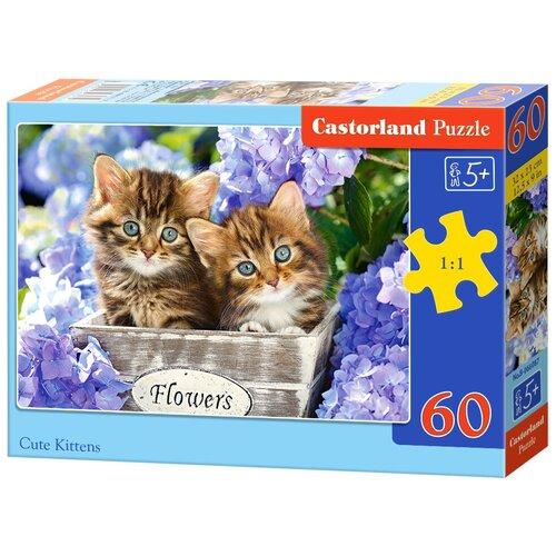 Пазл Castorland Cute Kittens (B-066087), 60 дет. пазл castorland cute kittens b 066087 60 дет