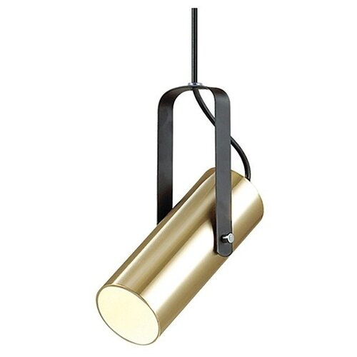 Подвесной светильник Lumion Claire 3714/1