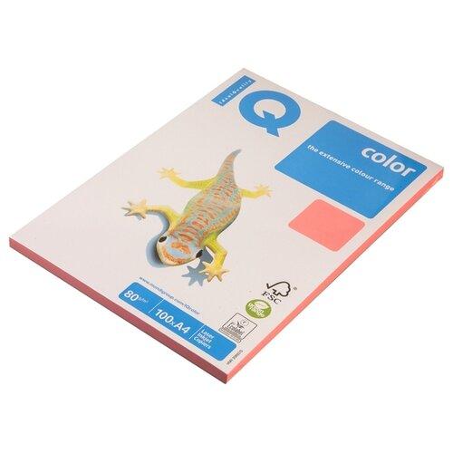 Фото - Бумага цветная А4 100л IQ COLOR Neon, 80г/м2, розовый неон, NEOPI 1555831 бумага цветная а4 500л iq color 80г м2 желтый zg34 1520958