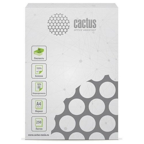 Фото - Бумага cactus A4 CS-OPB-A480250 80 г/м² 250 лист., белый бумага creative a4 студенческая 80 г м² 100 лист белый