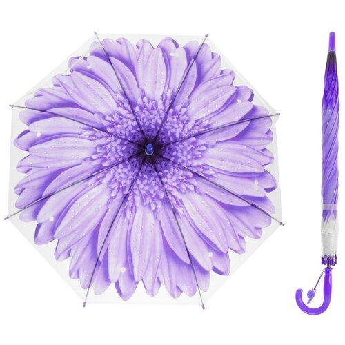 Зонт-трость «Гербера», полуавтоматический, со свистком, R=41см, цвет фиолетовый