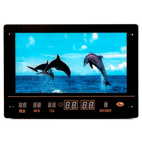 Часы настенные электронные 21 Век Семейство дельфинов черный