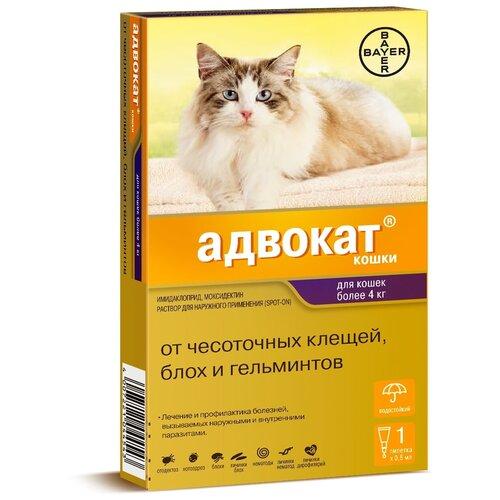 Адвокат (Bayer) Капли от чесоточных клещей, блох и гельминтов для кошек более 4 кг