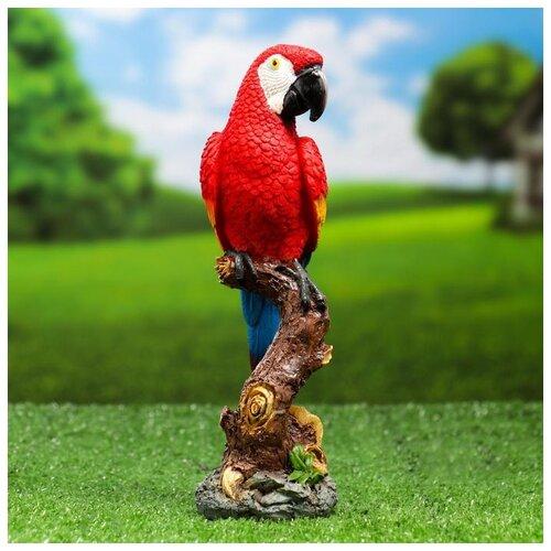 Садовая фигура Красный Ара на коряге 9,5х7х24см 5155107 садовая фигура красный ара на коряге 9 5х7х24см 5155107