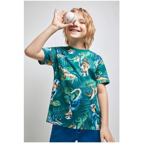 Фото - Футболка для мальчиков размер 158, набивка, ТМ Acoola, арт. 20110110294 футболка acoola размер 158 белый