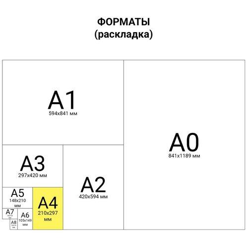 Обложки для переплета Brauberg пластиковые А4 комплект 100 шт 200 мкм прозрачно-синие (530830)