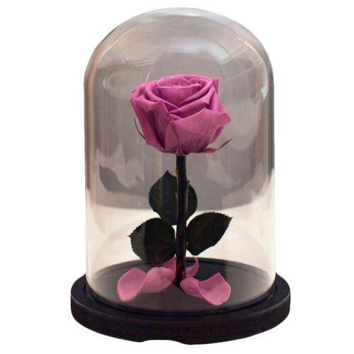 Роза в колбе RozaRose - Мини Сиреневая