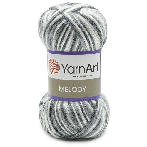 Купить Пряжа YarnArt 'Melody' 100гр 230м (9% шерсть, 21% акрил, 70% полиамид) (905 секционный), 5 мотков