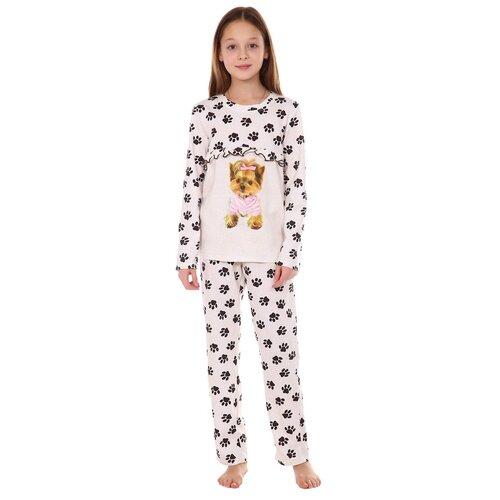 Купить Пижама Йорк ДХ102 (158 рост), Toontex, Домашняя одежда