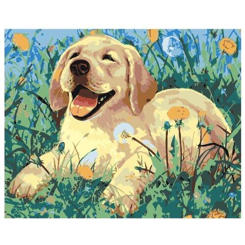 Купить Картина по номерам, 100 x 125, A61, Живопись по номерам , набор для раскрашивания, раскраска, Картины по номерам и контурам