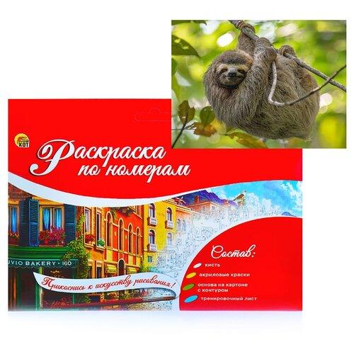 Раскраска по номерам Рыжий кот на картоне A4, Милый ленивец (Р-2383)
