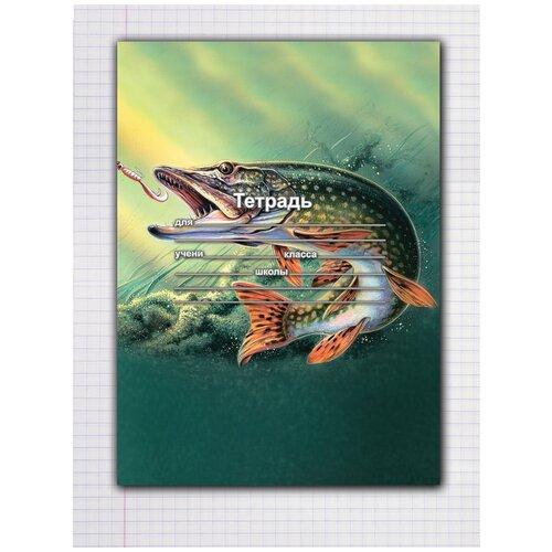 Купить Набор тетрадей 5 штук, 12 листов в клетку с рисунком Щука клюет, Drabs, Тетради