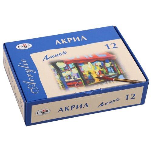 Купить ГАММА Акриловые краски Лицей 12 цветов х 20 мл (242002_8), Краски