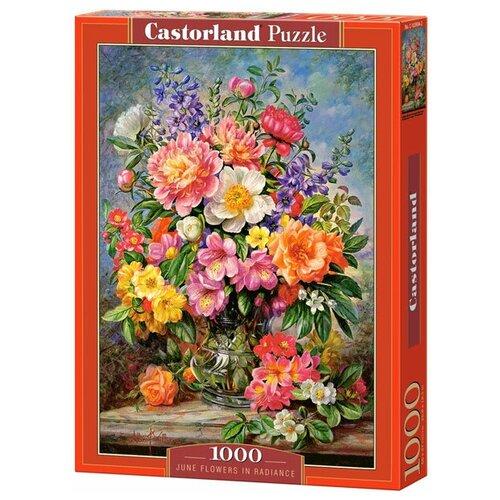 Пазл Castorland June Flowers in Radiance (C-103904), 1000 дет. пазл castorland pup in pink flowers b 52233 500 дет