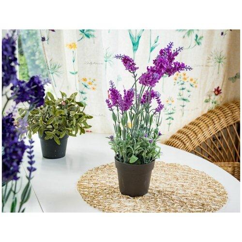 Элитные искусственные цветы ЛАВАНДА в горшочке, пластик, цвет-лиловый, 18x18x38 см, Kaemingk 800182-лиловый