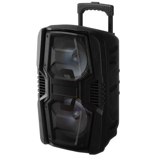 Портативная акустика NATIONAL NSM-V250, черный