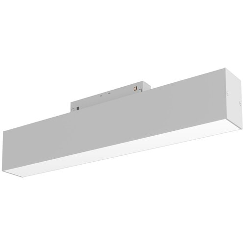 Трековый светильник-спот MAYTONI Basis TR012-2-12W3K-W
