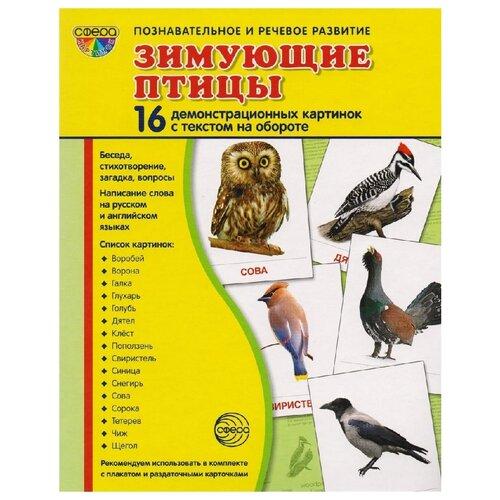 Набор карточек Творческий Центр СФЕРА Супер. Зимующие птицы 22x18 см 16 шт.
