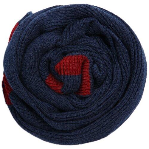 Шарф мужской Finn Flare, цвет: темно-синий A19-21151_114, размер No si