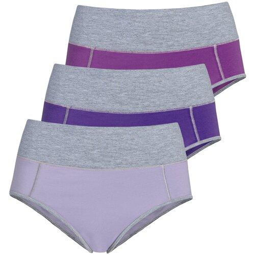 Lunarable Набор трусов брифы высокой посадки, 3 шт., размер 46-48, сиреневый/фиолетовый/пурпурный