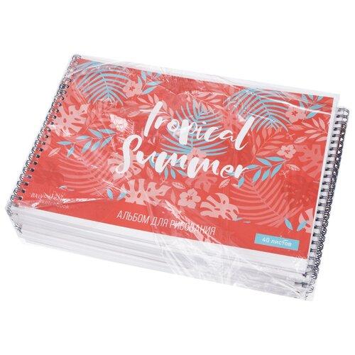 Купить Набор альбомов для рисования ArtSpace Bright coral 28, 5 х 20, 3 см, 100 г/м², 40л. (10шт.), Альбомы для рисования