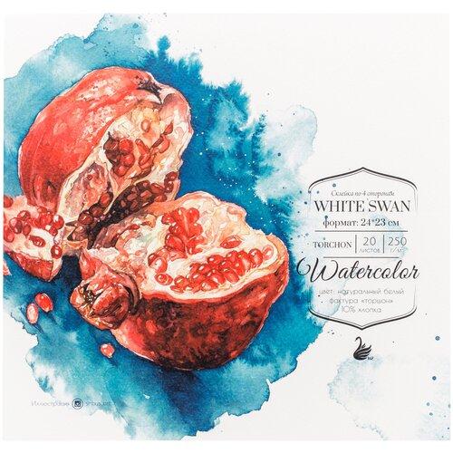 Фото - Альбом для акварели Малевичъ White Swan 24 х 23 см, 250 г/м², 20 л. альбом для акварели royal talens rembrandt 32 х 24 см 300 г м² 20 л