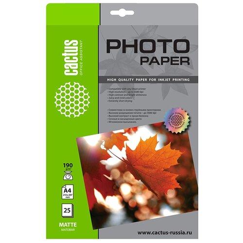 Фото - Бумага cactus A4 CS-MA419025 190 г/м² 25 лист., белый бумага cactus 914 мм cs lfptr 91445 90 г м² 45 м белый