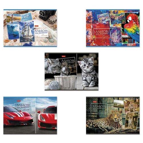 Купить Альбом для рисования А4 48 л., скоба, обложка картон, HATBER, 205х290 мм, Ассорти, 48А4В, Альбомы для рисования