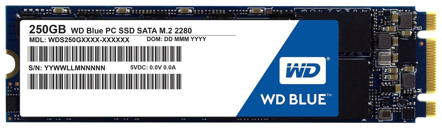 Твердотельный накопитель Western Digital WD Blue SATA 250 GB WDS250G1B0B — купить по выгодной цене на Яндекс.Маркете