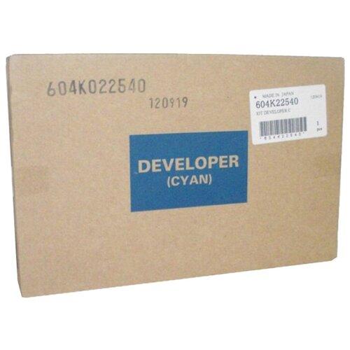 Фото - Девелопер Xerox 604k22540 блок проявки изображения xerox 106r01582 для ph 7800