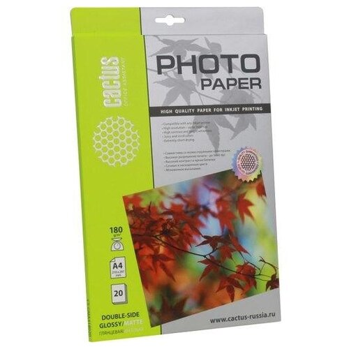 Фото - Бумага cactus A4 CS-GMA418020 180 г/м² 20 лист., белый бумага cactus 914 мм cs lfptr 91445 90 г м² 45 м белый
