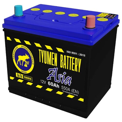 TYUMEN BATTERY Аккумуляторная батарея автомобильная 60 A/h обратная полярность Asia