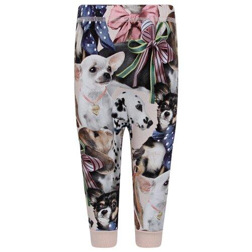Купить Брюки Molo размер 86, 6273 Puppy Love, Брюки и шорты