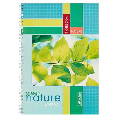 Тетрадь общая A4 на спирали в клетку Attache Green Nature 96 листов (цветы) тетрадь общая attache lines waves а5 96 листов в клетку на спирали 4 шт