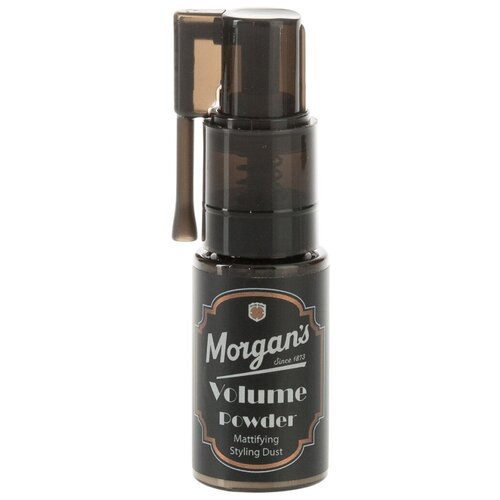 Купить Morgan's Пудра для придания объема Volume Powder, 5 г