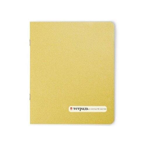 Тетради 48 листов серия Золотая в клетку. Набор 5 шт. Цена за 5 штук. тетради 48 листов в клетку серия премиум металлик набор 5 шт цена за 5 штук