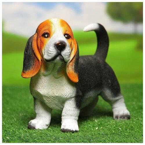 Садовая фигура Щенок бассет-хаунда стоячий, 25х16х13см 3775309 садовая фигура щенок с клубникой 20 х16 см 6255372