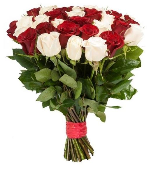 Букет из 25 разноцветных роз, 50см арт.770111