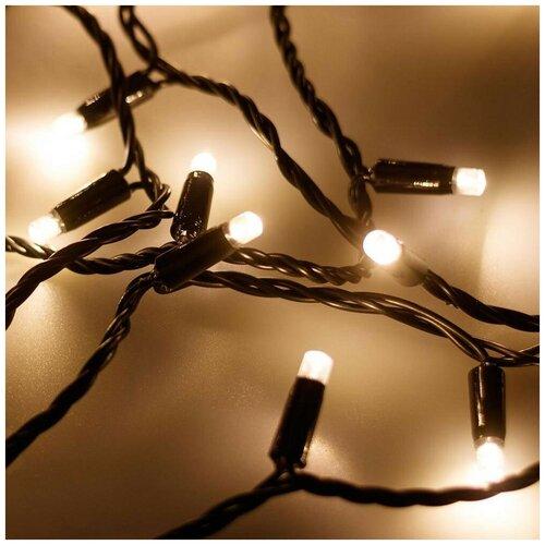Гирлянда Ardecoled нить 025795 (1000 см), 100 ламп, теплый белый/черный провод гирлянда feron нить cl34 1000 см 100 ламп теплый белый черный провод
