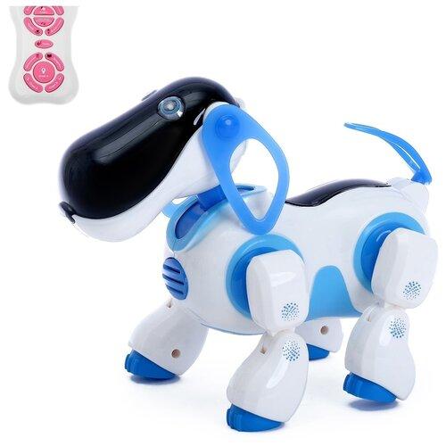 Фото - Робот радиоуправляемый, собака робот Ки-Ки, интерактивный, русское озвучивание, синий радиоуправляемые игрушки 1 toy интерактивный радиоуправляемый щенок робот дружок