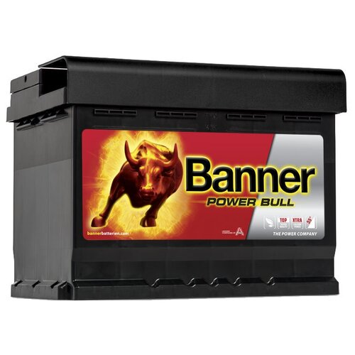 Автомобильный аккумулятор Banner Power Bull P60 09